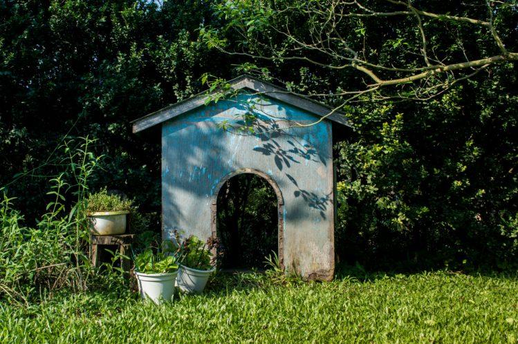 庭に置かれた青い犬小屋