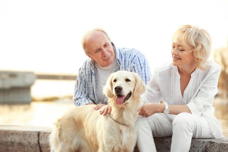 愛犬とお別れの日。アメリカのペット事情と在宅ホスピスについて