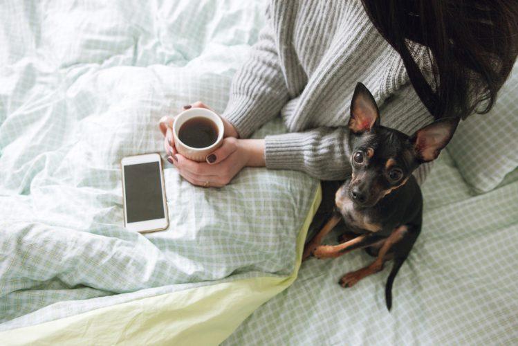 ベッドで愛犬とくつろぐ女性