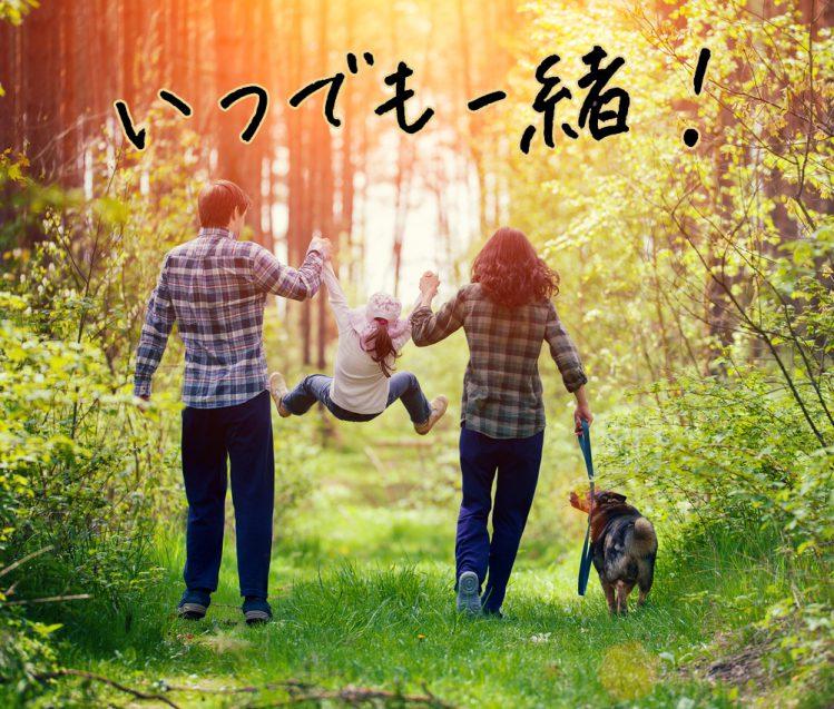 家族と散歩する犬