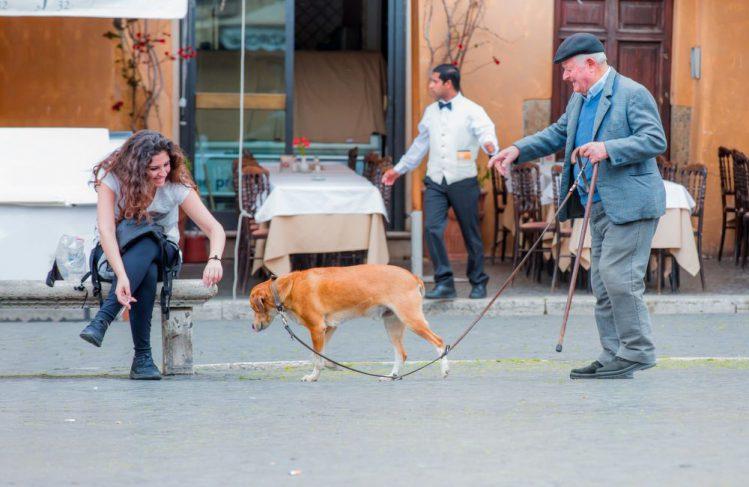 オシャレなおじさんが犬の散歩をしている様子
