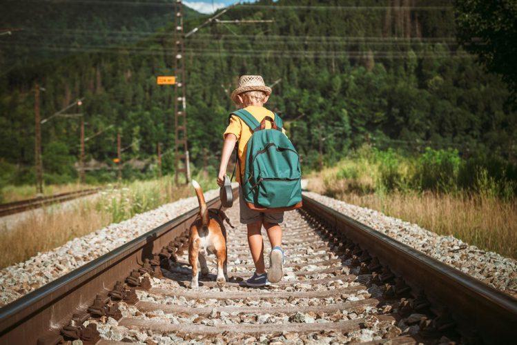 犬と少年が線路の上を歩いている様子