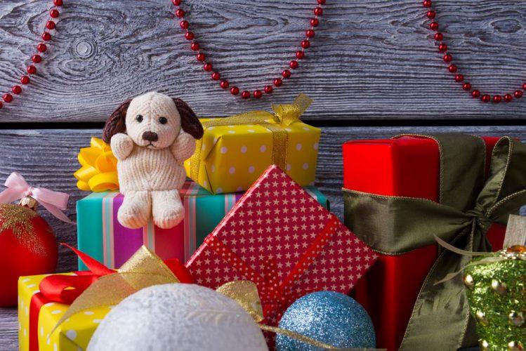 犬好きな友達へのプレゼント5選