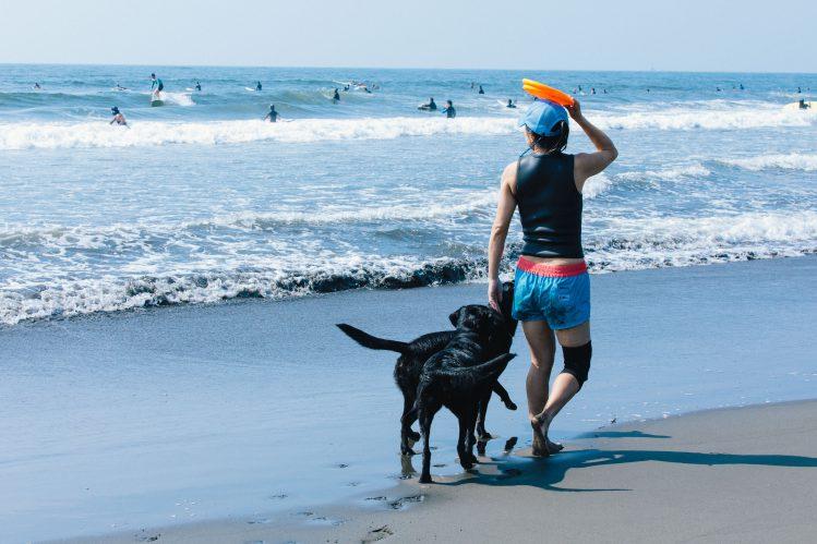 【写真たくさん!】やっぱり憧れ!「湘南」で愛犬と遊ぶ飼い主さんたち