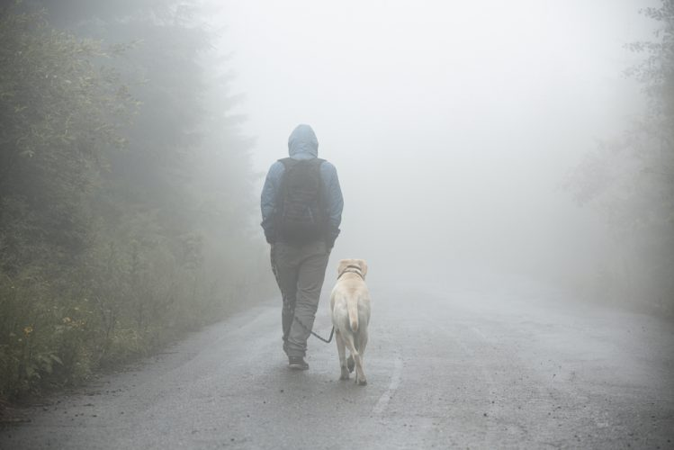 フードをかぶった男性と歩く犬
