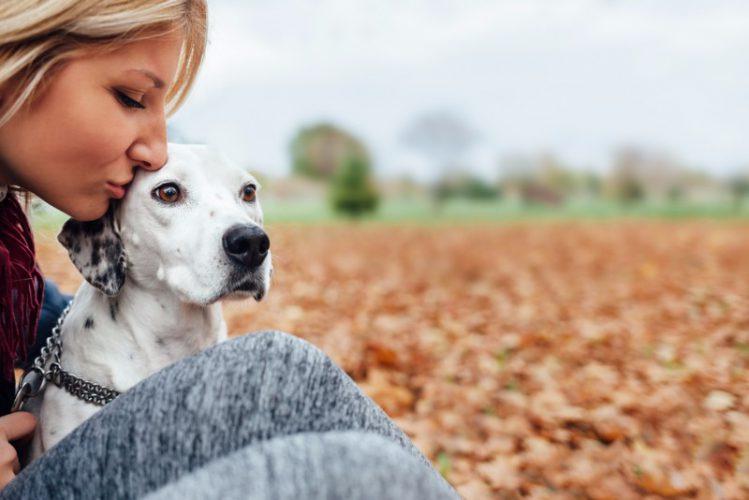 犬の額に口を付ける飼い主