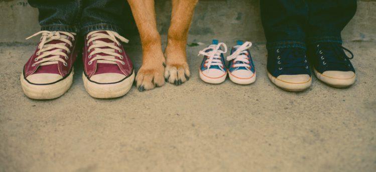 2人の足元と犬の前足と赤ちゃんサイズのスニーカー