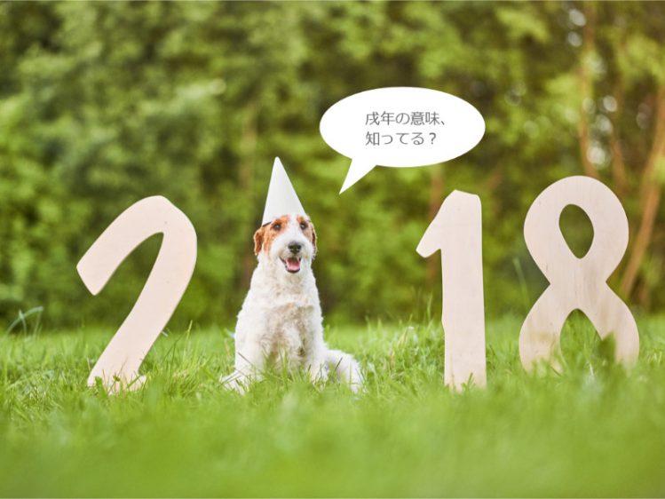 2018の文字と犬