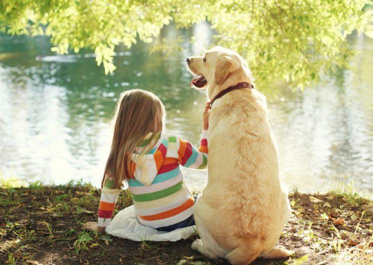 「犬 お別れ」の画像検索結果