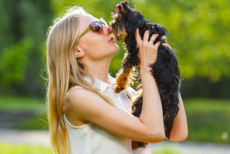 犬を抱き上げる飼い主
