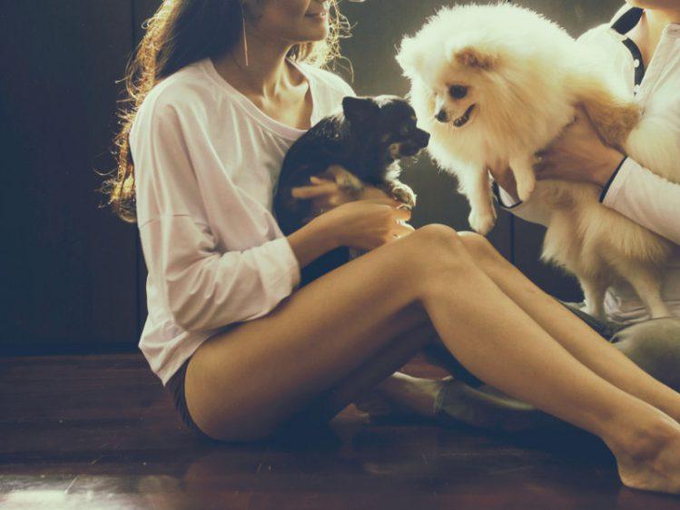 それぞれ犬を抱えている男女