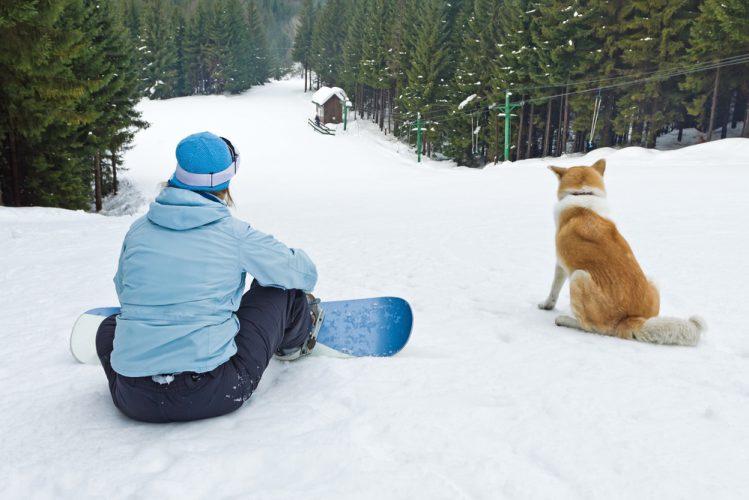 スノーボードをしている人とその愛犬